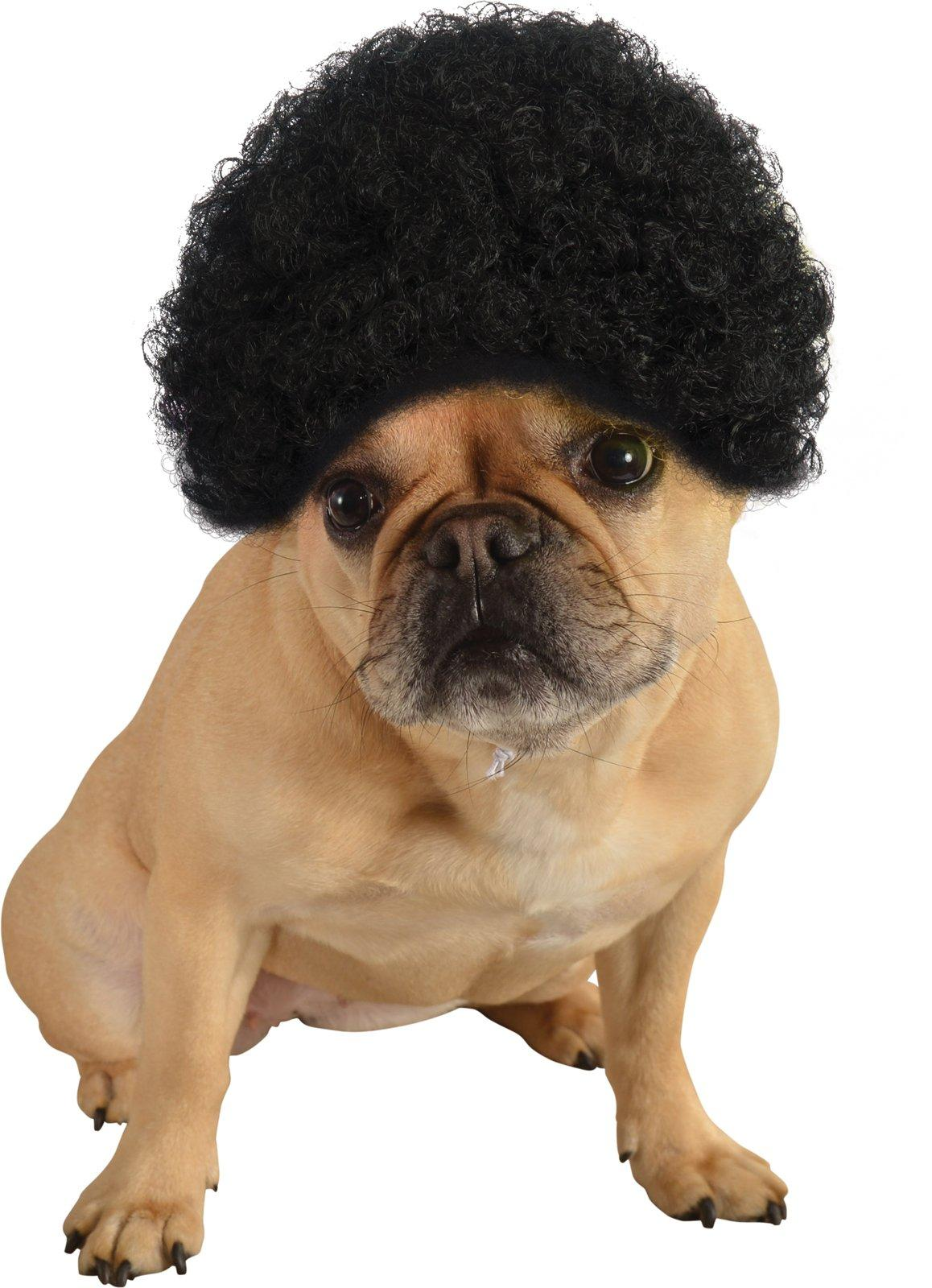 Top 10 Tuesdays Dog Costumes  sc 1 st  BuyCostumes.com & Top 10 Tuesdays: Dog Costumes - Halloween Costume Ideas