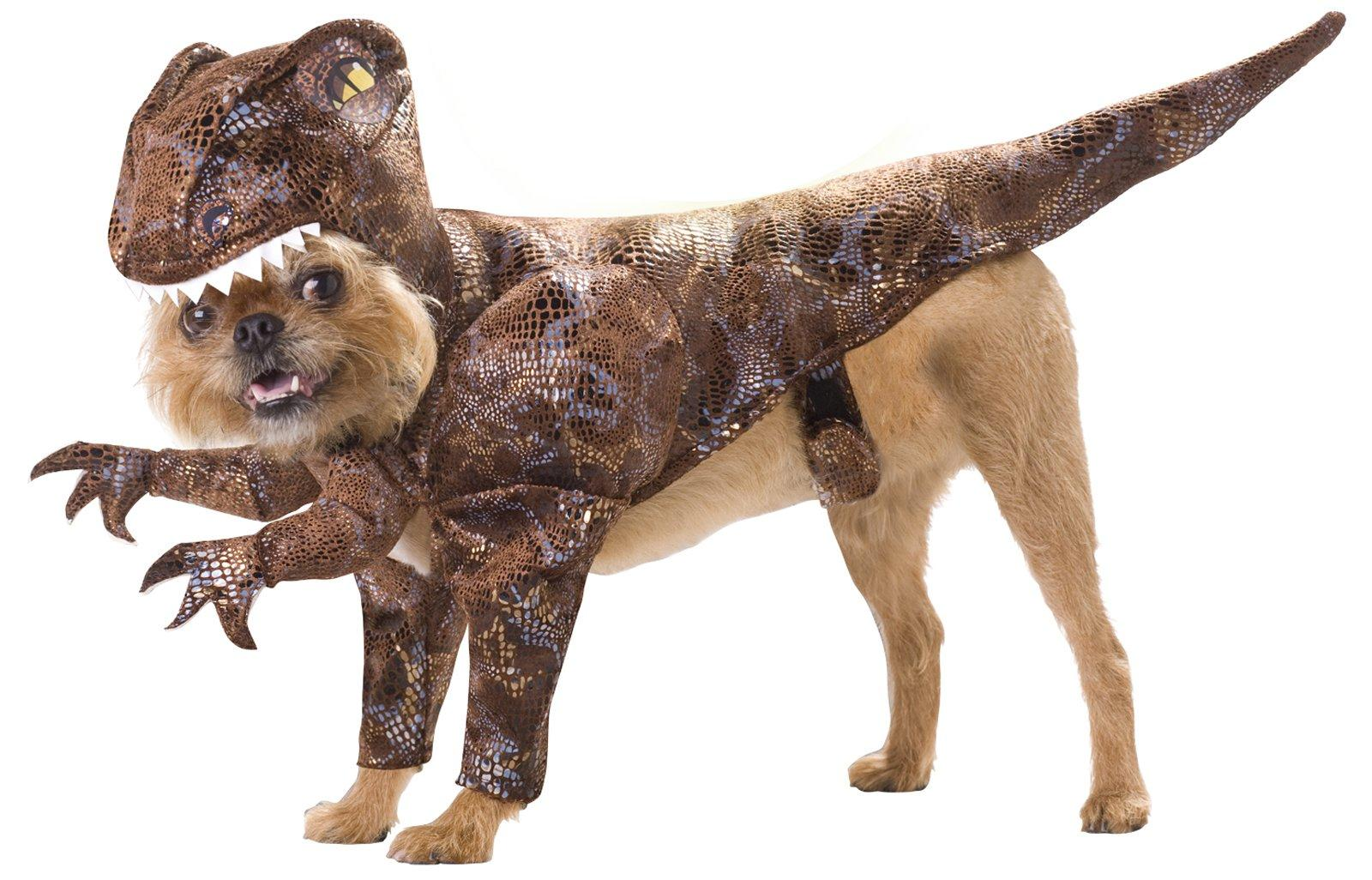 If youu0027re going to be hosting some friends to take in a few shark shows dress up your dog and get a few laughs while youu0027re at it.  sc 1 st  BuyCostumes.com & Top 10 Tuesdays: Dog Costumes - Halloween Costume Ideas