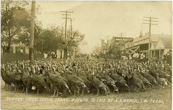 The Cuero Texas Turkey Trot with real turkeys in the year 1912.