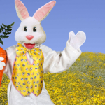 15 Rabbits that are Way Better than the Easter Bunny